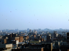 kites over lahore